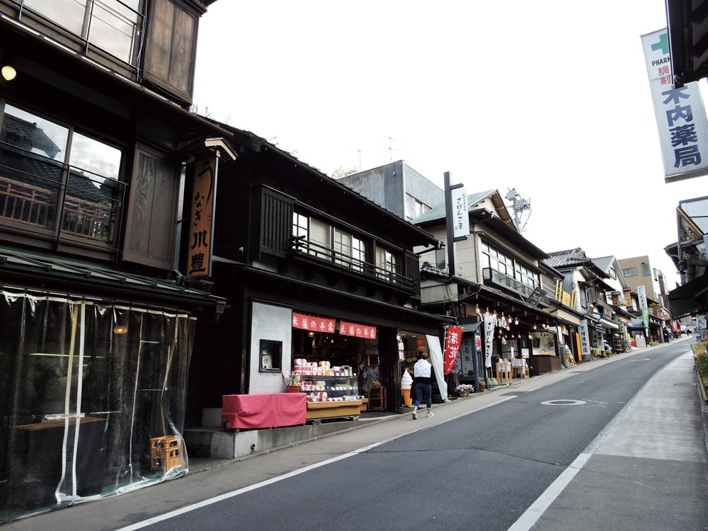 成田山までの参道を歩く。仲之町の坂。